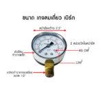 BERG single wind gauge 1 1