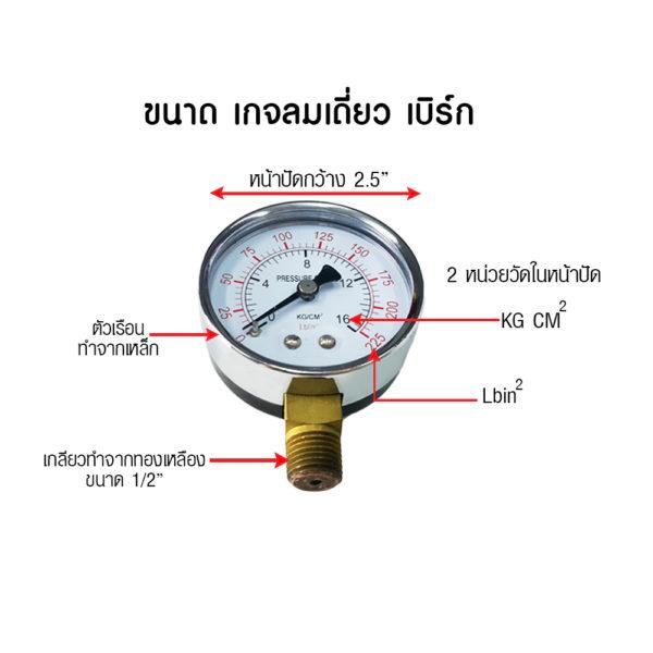 BERG Pressure gauge single air gauge