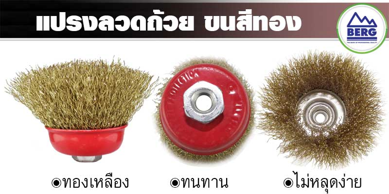 BERG Golden Wire Cup Brush 1 5